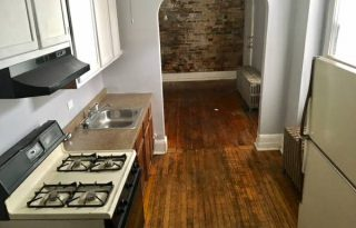 Humboldt Park 1 Bedroom / 1 Bathroom Apartment For Lease on North Avenue
