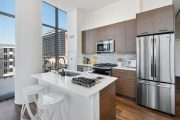 River North 2-Bedroom / 2-Bathroom Unit in New Luxury Building